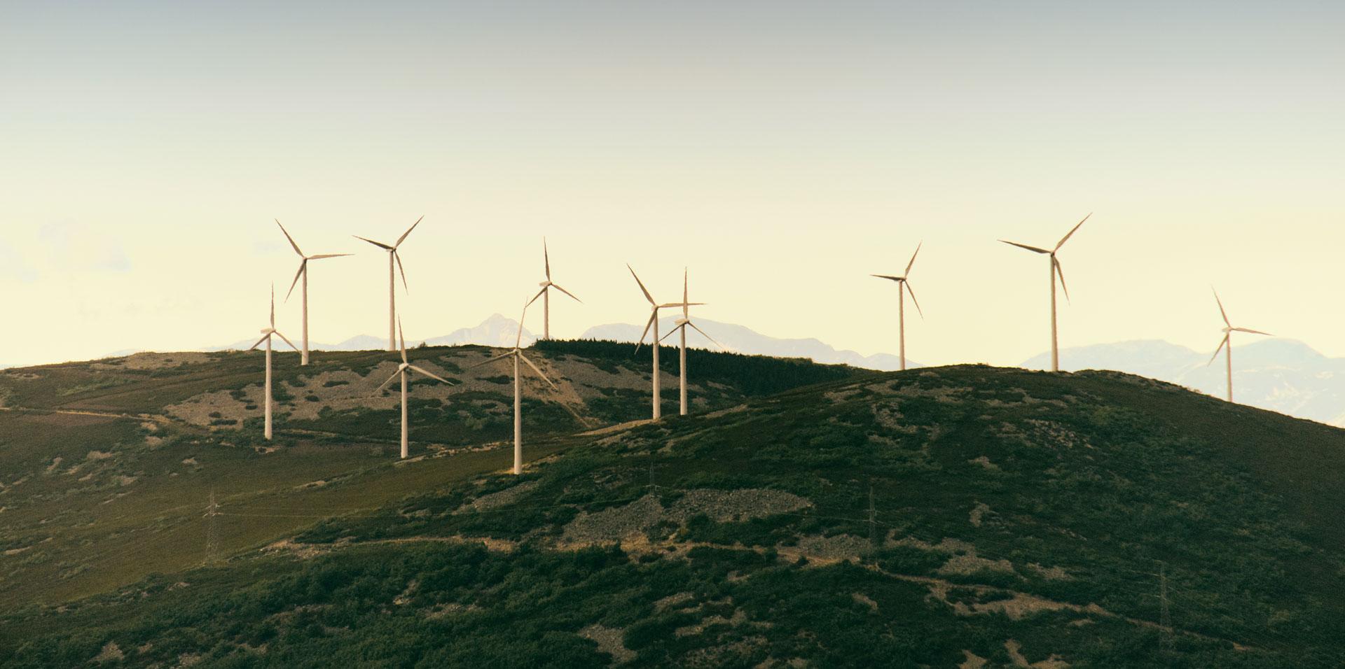 Contratar energía renovable